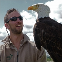 falconer-with-bald-eagle