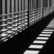 sunlight-through-blinds
