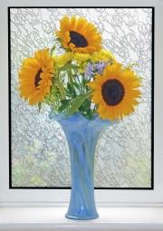 flowers-in-a-window
