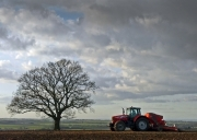 tractor-and-tree