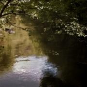 River Barle Exmoor