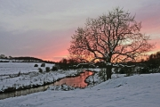 snow-sunset